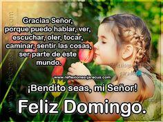 Feliz Domingo, Gracias Señor, Bendito seas