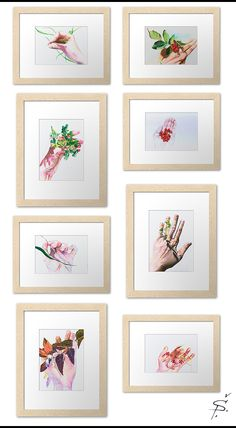 Framed prints of original colored pencils illustrations. Year round collection capturing florals in hand of the artist as she found them. Each illustration depicts a mood of the moment, day light, season, weather. Pencil Illustration, Botanical Illustration, Colored Pencils, Florals, Gallery Wall, Framed Prints, Weather, In This Moment, Illustrations