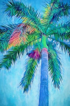 Caribbean Blue I Canvas Palm Trees Royal Palm by MMBPhotoGraphics