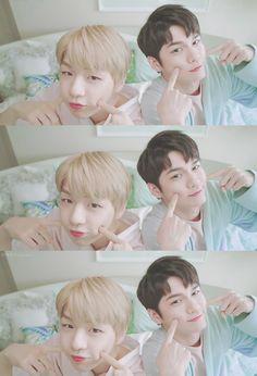 Wanna-One - Seongwoo x Daniel (OngNiel) - OngNiel is science Jaehwan Wanna One, Ong Seung Woo, Daniel K, Kpop Couples, Produce 101 Season 2, Kim Jaehwan, Ha Sungwoon, Korean Star, 3 In One