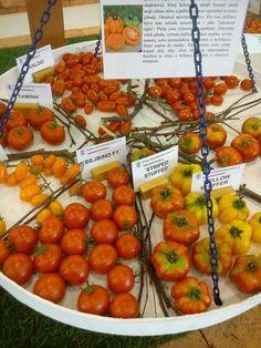 FLORA Flora, Vegetables, Vegetable Recipes