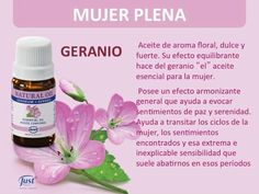 Swiss Just Monterrey Spiritual Messages, Perfume, Carrier Oils, Natural Life, Young Living Essential Oils, Reiki, Natural Remedies, Beauty Hacks, Personal Care