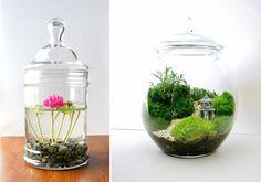 Os damos algunas imágenes que os van a inspirar para llenar nuestra casa de plantas y mini jardines que resultan de lo más decorativo.