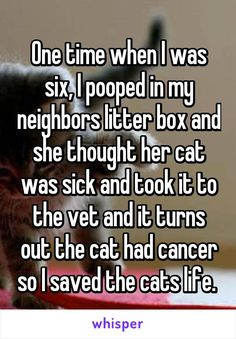 One time when I was six, I pooped in my neighbors litter box and she thought her cat was sick and took it to the vet and it turns out the cat had cancer so I saved the cats life.