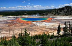 The Grand Prismatic Spring in Yellowstone National Park is the largest hot spring in the United States, and the third largest in the world!