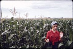 Teenage Worker Detasseling Corn in a Field During the Summer near New Ulm, Minnesota. Make Money From Home, How To Make Money, New Ulm, Creative Commons Images, Corn Plant, Miss Moss, Still Picture, Fidel Castro, Photo Maps