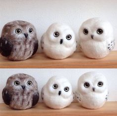 Cute Needle felted project wool animal owls(Via @mikeneko.ha_bu)