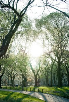 "Spring in Central Park; ""Hold Up the Sun"" by #richkolasa"
