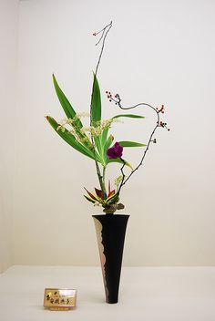 Ikebana Ikenobo with a deep purple Orchid | Flickr - Photo Sharing!