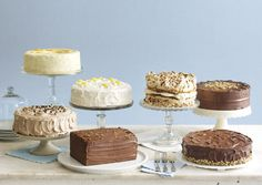 A delightful selection of cakes