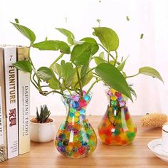 Random Color Crystal Soil Jell Mud Soil Water Beads Growing-water-ball Plant Cultivate Home Decor Ethnic Home Decor, Indian Home Decor, Indoor Water Garden, Indoor Plants, House Plants Decor, Plant Decor, Pottery Painting Designs, Indian Home Interior, Window Display Design