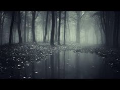 Our Beautiful Relax Music That Help You To Get Into Quick Sleep 💖 #deepsleepmusic - YouTube Dark Wallpaper, Computer Wallpaper, Nature Wallpaper, Dark Photography, Monochrome Photography, Mysterious Universe, Psychedelic Tapestry, Phone Background Patterns, Cool Backgrounds