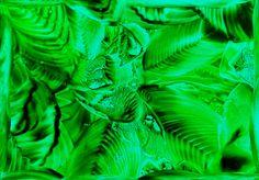 Energetický obrázek: V trávě - JIŽ PRODÁNO