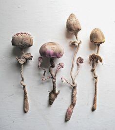 Textile-Mushrooms-Mr-Finch
