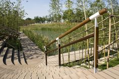 MOSO is recognized as the A-brand in bamboo flooring, decking, panels and veneer, because of its focus on sustainability, quality and innovation. Hunter Douglas, Paver Path, Bamboo Decking, Moso Bamboo, Solid Surface, Interior Exterior, Garden Bridge, Natural, Outdoor Structures