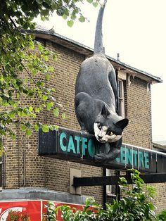 The Catford Cat ~ Catford is a town in the south-east London borough of Lewisham that has a notable and appropriate landmark — a giant fibreglass cat that welcomes visitors to the Catford Shopping Centre. Street Cat Bob, Storefront Signs, Cat Signs, Cat Statue, Roadside Attractions, Street Signs, Illustrations, Shop Signs, Crazy Cats