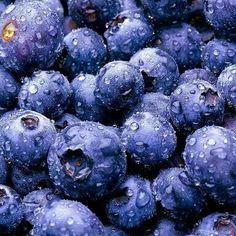 Blueberry Frozen (import) 255.000