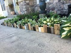 Wooden Garden Edging, Garden Borders, Diy Pallet Projects, Garden Projects, Garden Shrubs, Garden Landscaping, Raised Garden Beds, Raised Bed, Landscape Design