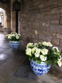 blue and white pots with white hydrangea = love