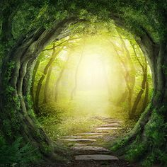 Your Life is 48% Green  Your life is pretty green - and you know a lot about how to live an eco friendly life. So congratulate yourself for being good to the earth. And maybe think about implementing some of the ideas from this quiz!