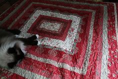 French General fabric.  I love this quilt.  The cat is pretty too. :)