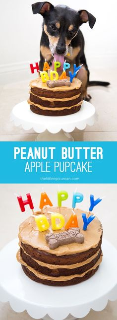 Peanut Butter Apple Pupcake is perfect treat for celebrating your dog's birthday. Made with applesauce cake and frosted with peanut butter