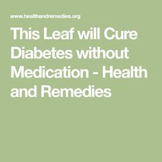 This Leaf will Cure Diabetes without Medication - Health and Remedies