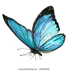 drawn-butterfly-blue-butterfly-9.jpg 450×470 pixels