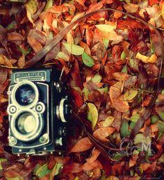 Autumn Vintage Camera