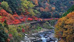HOSHINOYA Kyoto, Japan | Activity - Our activities | Hoshino Resorts