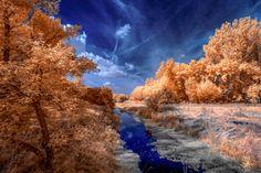 Little creek by Thorsten Scheel