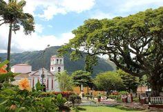 Bochalema (NS) #igerscolombia #ig_colombia #colombia_folklore #galeriaco #thisisincolombia #ig_santanderes #igerssantanderes #igerscucuta by josedavid.correa.9