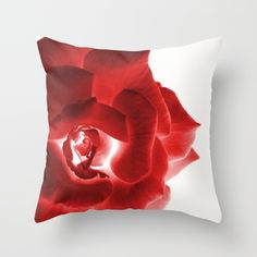 #throwpillow #throwpillows #pillows #pillow #pillowcase #pillowcases #cushion   #cushions #homedecor #society6 #artbyjwp  Buy Red Rose Throw Pillow by ARTbyJWP. Worldwide shipping available at Society6.com. Just one of millions of high quality products available.