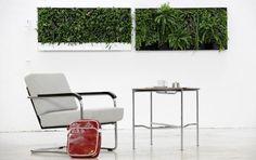 pflanzen wand verticalis mehr diy inspiration wand verticalis 107. Black Bedroom Furniture Sets. Home Design Ideas