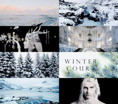 """"""" ACOWAR MEME : ➝ prythian courts There are seven courts that rule Prythian, each with a High Lord ruling over it. They are divided into two, Seasonal and Solar Courts. The nature of the Seasonal..."""