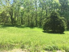 1.92 acre lot to build your new home on. Large trees. water and electric available in Green Forest AR