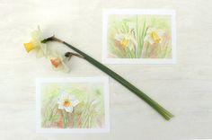 Set of Daffodil Prints based on watercolour paintings by Kathleen Maunder (trowelandpaintbrush)