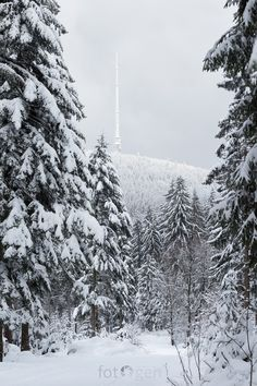 Blick zum Ochsenkopf Fichtelgebirge Schnee snow Berg Gebirge Franken Bayern Landschaft landscape Landschaftsfotografie Natur