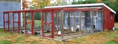Poultry-Housing-5-Essential-Steps-for-making-Poultry-Fantastic