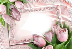 flower frame | flowers frame