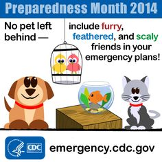 Remember your pets in your emergency plan. Include food and water for them in your emergency kit and identify pet friendly shelters in your area.