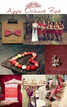 apple orchard red, fall, autumn, wedding inspiration