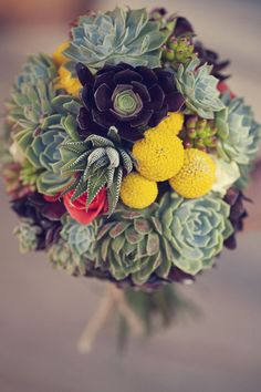 succulents and billy balls ... would look smashing with an aubergine maids dress