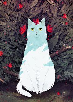 """sam2119931: """"White Cat. """""""