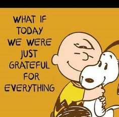Think every single day what you're grateful for and record it on paper! Charlie Brown and snoopy quote. Life Quotes Love, Great Quotes, Me Quotes, Motivational Quotes, Funny Quotes, Inspirational Quotes, Crush Quotes, Happy Quotes, Peanuts Quotes