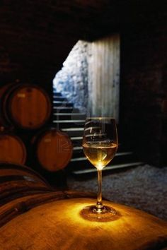 Picture of A glass of Chardonnay sits on a wine cask in the cellar at the Domain Chavy winery stock photo, images and stock photography. White Wine, Red Wine, Pork Roast And Sauerkraut, Texas Wineries, Wine Cask, Winery Tasting Room, French Wine, Wine Time, Wine And Spirits