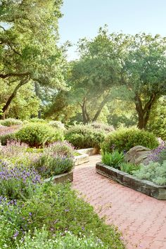 The lush garden features lavender, rosemary, irises, and fruit trees.