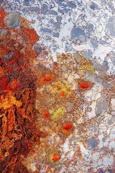 Textile Design and Designer`s Platform Contemporary Embroidery, Contemporary Quilts, Textiles Sketchbook, Art Sketchbook, A Level Textiles, Textiles Techniques, Textile Texture, A Level Art, Natural Forms