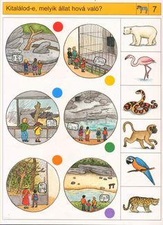 Welke dieren horen in welke hokken, free printable Preschool Zoo Theme, Preschool Printables, Preschool Worksheets, Kindergarten Activities, Fine Motor Activities For Kids, Kids Learning, Autism Classroom, Kids Prints, Creative Kids