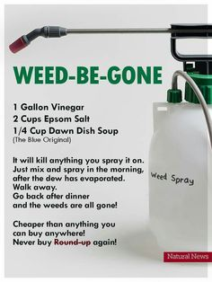 recette maison weed-be-gone Weed Killer, Cleaning Solutions, Cleaning Hacks, Plant Care, Household, Vacuums, Personal Care, Landscaping, Wet Vacuums